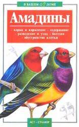 купить: Книга В вашем доме: Амадины