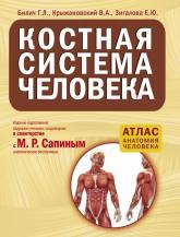 купить: Книга Костная система человека