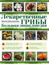 купить: Энциклопедия Лекарственные грибы. Большая энциклопедия