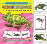 купить: Книга Земноводные и пресмыкающиеся. 16 обучающих карточек