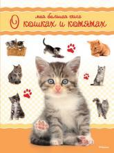 купить: Книга Моя большая книга о кошках и котятах