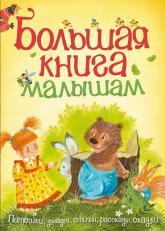 купить: Книга Большая книга малышам