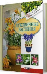 купити: Книга Луковичные растения