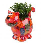 купить: Сувенир для дома Blooming Dorothy. Квітковий горщик Кішка Дороті (з рослиною) 6 ASS