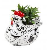 buy: Souvenir for home Blooming Alice. Квітковий горщик Курочка Еліс (з рослиною) 6ass