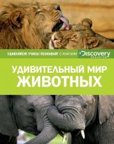 buy: Book Удивительный мир животных