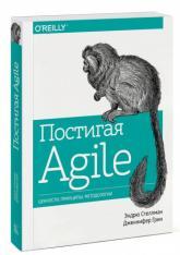 buy: Book Постигая Agile. Ценности, принципы, методологии