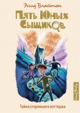 купити: Книга Тайна сгоревшего коттеджа