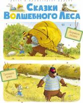 купити: Книга Сказки волшебного леса: Аварийная посадка, Пропавшая шляпа
