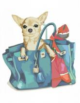 """купити: Набір для творчості Набір, картина за номерами """"Собачка в жіночій сумці"""""""