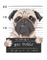 """купити: Набір для творчості Набір, картина за ном., """"Bad Puggy"""", 35х45см, ROS"""