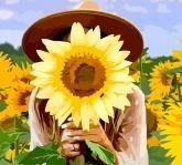 """купити: Набір для творчості Набір-стандарт, картина за номерами """"Дівчина з соняш"""