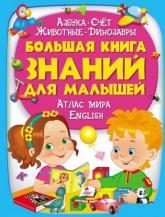 купить: Книга Большая книга знаний для малышей