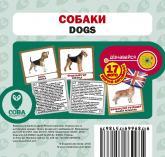 купить: Книга Собаки