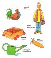 купить: Книга My first English words. Farm / Ферма изображение3