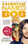 buy: Book A Street Cat Named Bob. How one man and his cat found hope on the streets